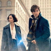 Image: Fantastic Beasts and Where to Find Them